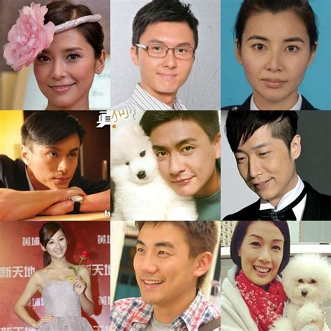 tvb harstyle 226 best images about tvb on pinterest yang mi hong