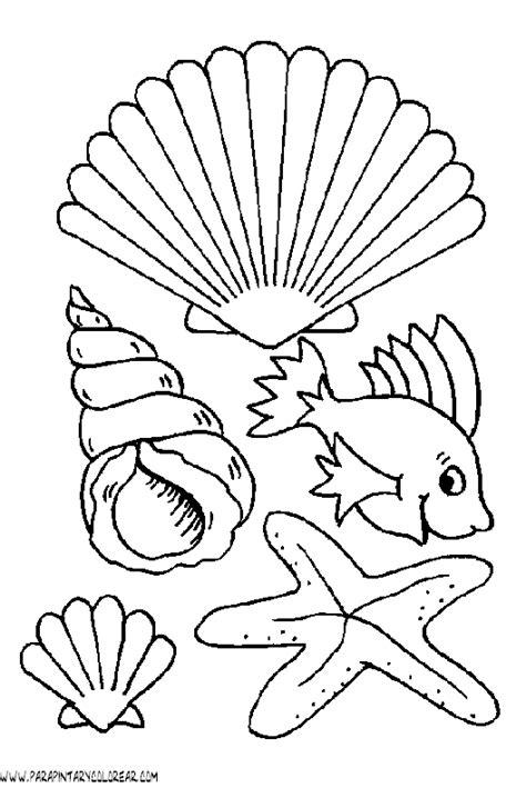 imagenes variados para pin dibujos animales de mar imagui