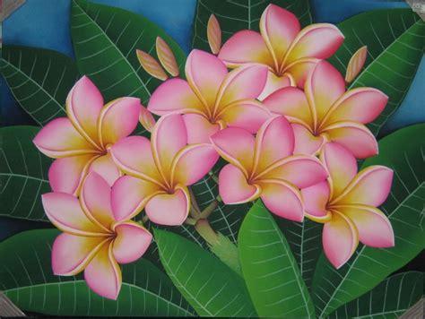 wallpaper bunga kamboja 50 contoh gambar lukisan bunga sederhana yang indah di