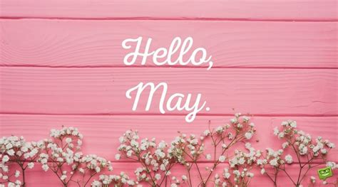 hello may quotes about in bloom part 2