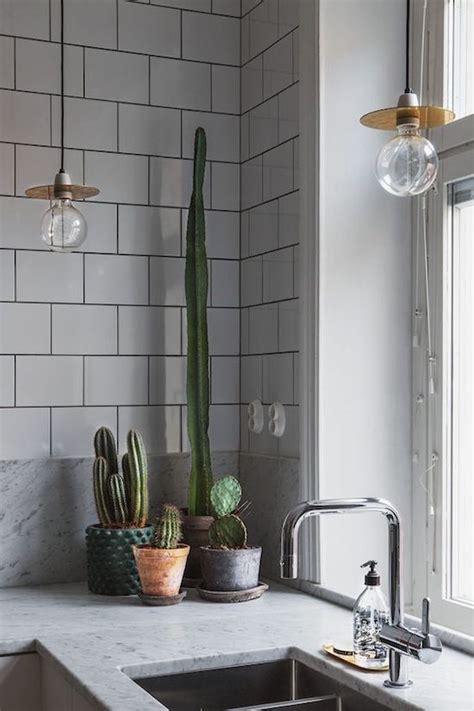 decorar rincon con plantas decorar la cocina con plantas 8 ideas muy originales