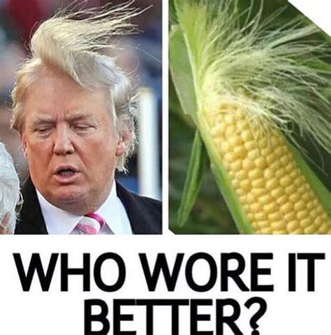 Donald Trump Vs Corn   who wore it better donald trump meme meme collection