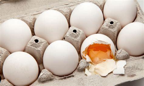 frode alimentare miloni di uova biologiche false l ennesima frode