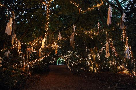 installation of fairy lights in trees 5 things we learnt at end of the road festival the line of best fit