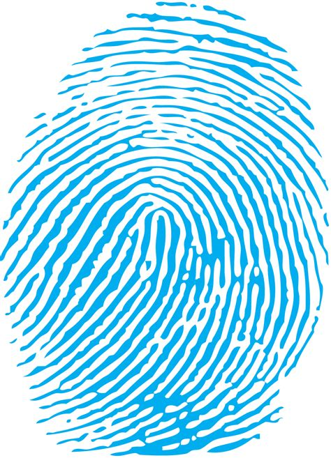 biometric art blue fingerprint png blue fingerprint clipart best