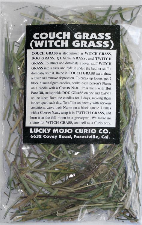 couch grass herb herb magic catalogue a couch grass