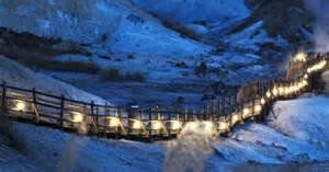 White Light Bulbs Winter In Hokkaido Powder Snow Paradise
