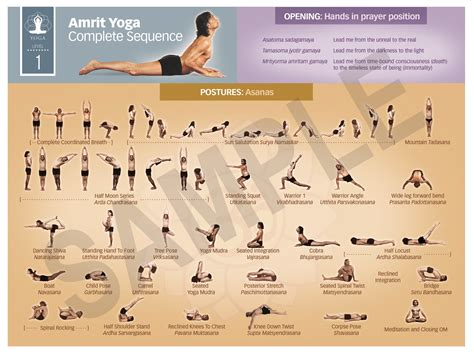tutorial asana yoga teacher training integrative amrit method of yoga level