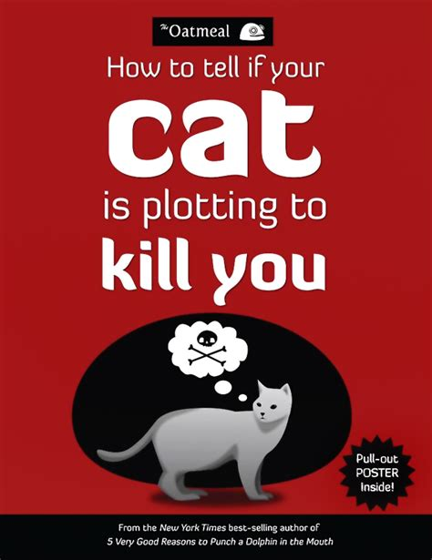 how to kill your how to tell if your cat is plotting to kill you by the oatmeal