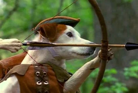 wishbone breed our favorite pop culture dogs for every breed nerdist
