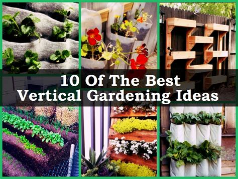 Best Vertical Garden 10 Of The Best Vertical Gardening Ideas
