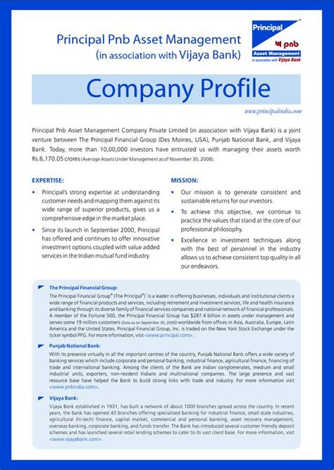 business profile exles buyerpricer places to visit company profile