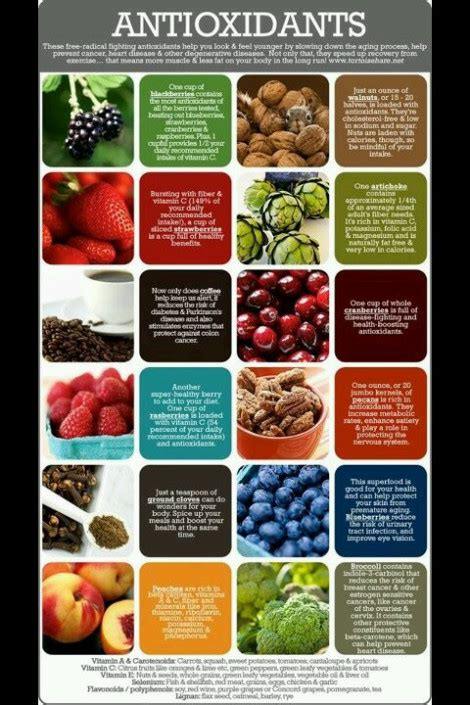 High Nuturient Dense Foods For Detox by Nutrient Dense Foods High In Antioxidants Well Evolved U