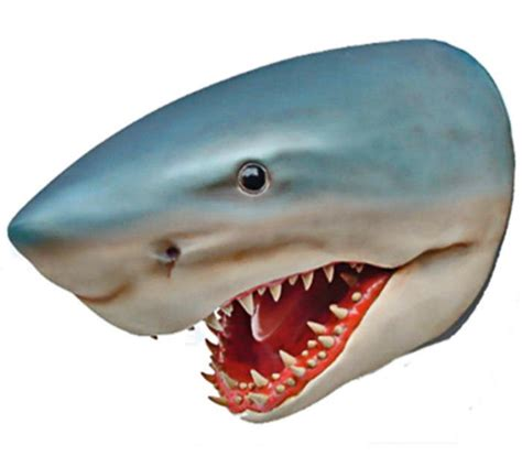 Pub Dining Room Tables Shark Head Wall Mount Liberty Games
