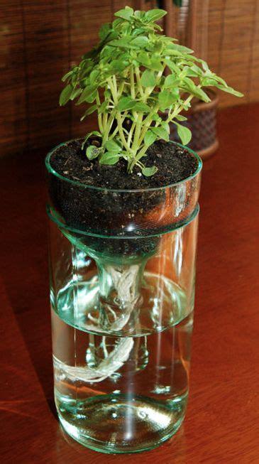 glass bottle diy planter  creative home decor http