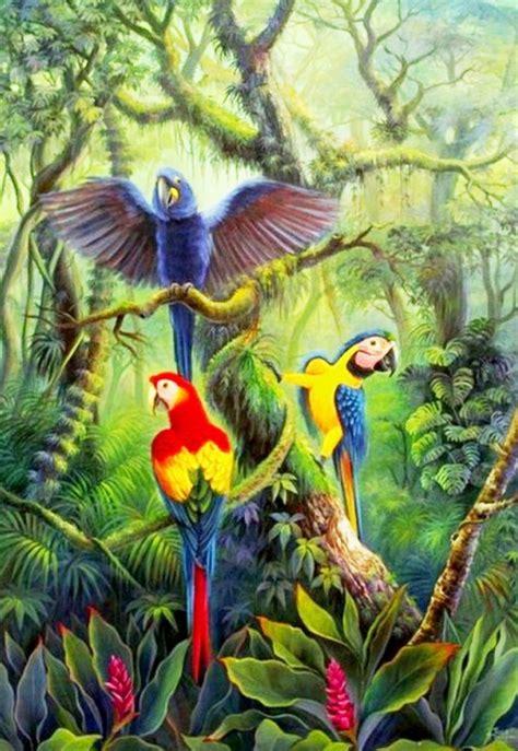 los pjaros el arte pinturas cuadros lienzos pinturas de pajaros exoticos