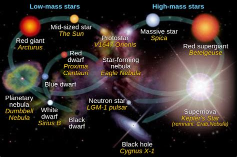 of a cycle of a astronomy is awesome