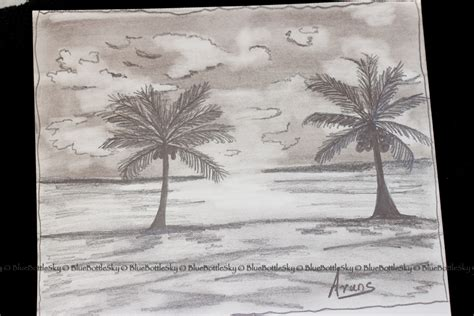 7 Drawing Pencil by Pencil Sketching Day 12 A Cloudy Sunset Bluebottlesky