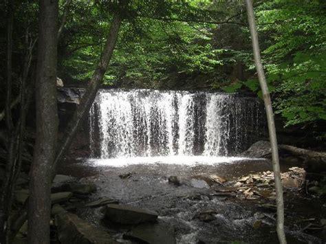 Ricketts Glen State Park Cabin Rentals by Ricketts Glen State Park Cground Updated 2016 Reviews