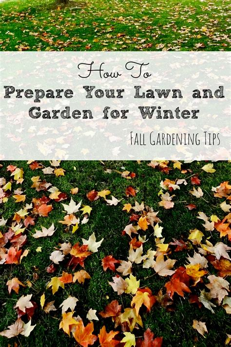 garden tips for winter how to prepare your lawn and garden for winter fall
