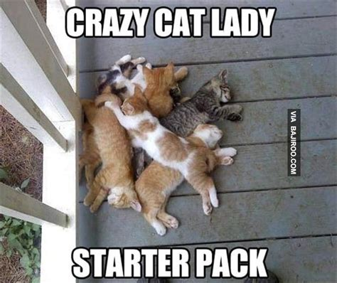 Weird Cat Meme - funny cat ladystarter pack meme bajiroo com