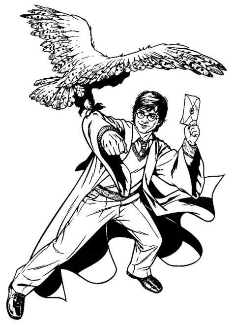 harry potter coloring pages hedwig free coloring pages of harry potter hedwig owl