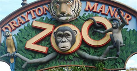 theme park zoo uk adopt an animal at drayton manor zoo birmingham mail