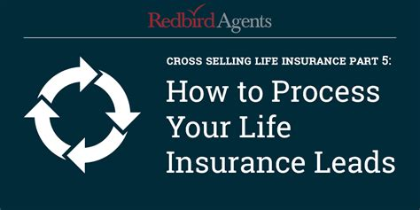 Insurance Cross Sell Letters cross selling how to process your insurance leads
