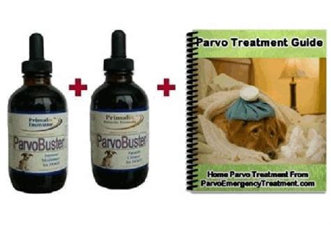 how to get rid of parvo in puppies herpes zoster treatment guidelines home treatment for parvo what can i take for acid