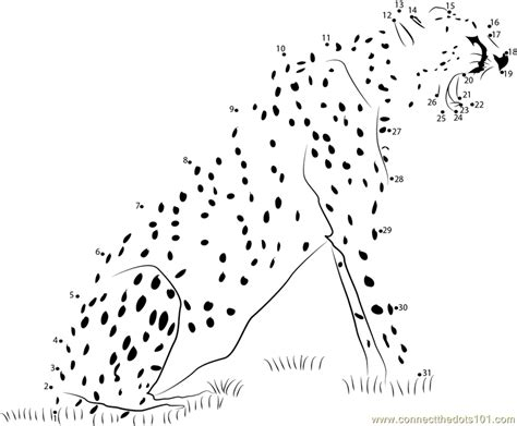 printable animal dot to dots animal state cheetah dot to dot printable worksheet