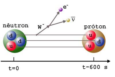 Decay Bb bb nucleo 11 neutron decay