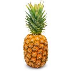 ananas le l ananas histoire et anecdotes interfel les fruits