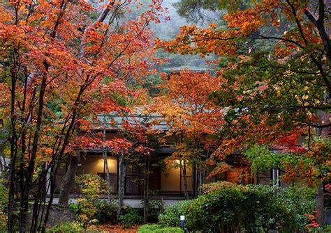 imagenes de otoño en japon autumn in japan simfonia toamnei pentruvoi s weblog