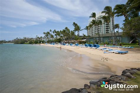 Creature Comforts Pet Resort The 5 Best Beach Hotels In Waikiki Oyster Com