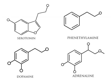 dopamine molecule tattoo 25 best ideas about dopamine on