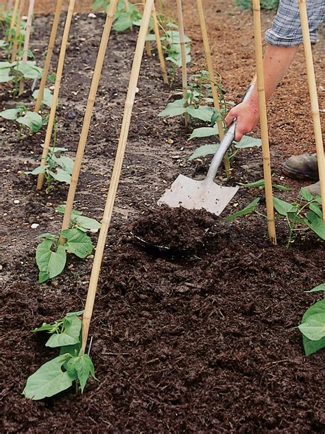 Mulch For Vegetable Gardens Best Mulch For Garden 17 Best Images About Rock Mulch