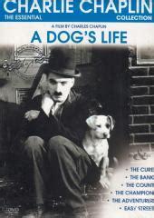 charlie chaplin biography in marathi charlie chaplin a dog s life other shorts dvd