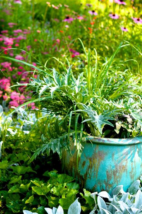 pots for container gardening growing medicinal herbs in containers castanea