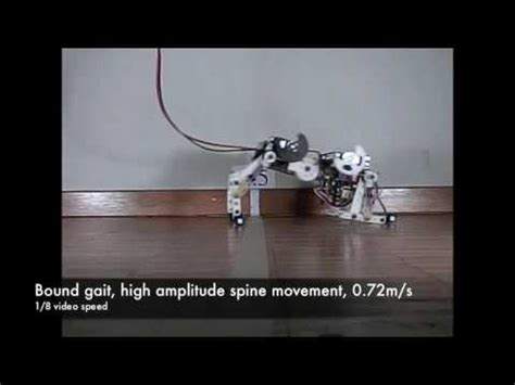 central pattern generator youtube bobcat robot a bounding quadruped robot with an active