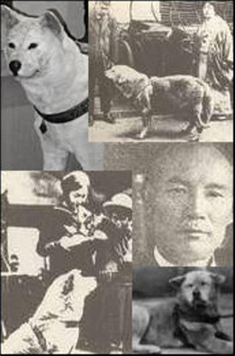 The Story Of Dogs hachiko a dog s story prashant s blogworld