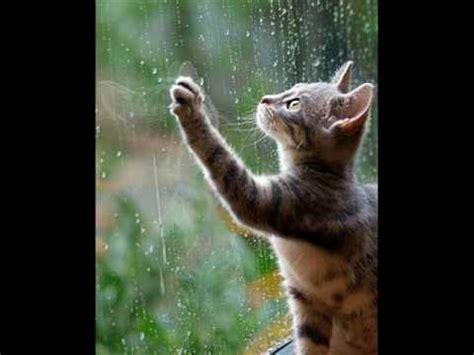 gazebo rainy days gazebo remix i like chopin rainy days maxi version