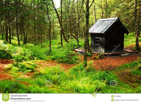 Cabin In The Woods Free by Cabin In Woods Royalty Free Stock Photos Image 5769698