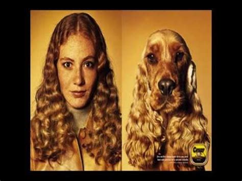 why do dogs like humans i ll be doggone really do look like their dogs