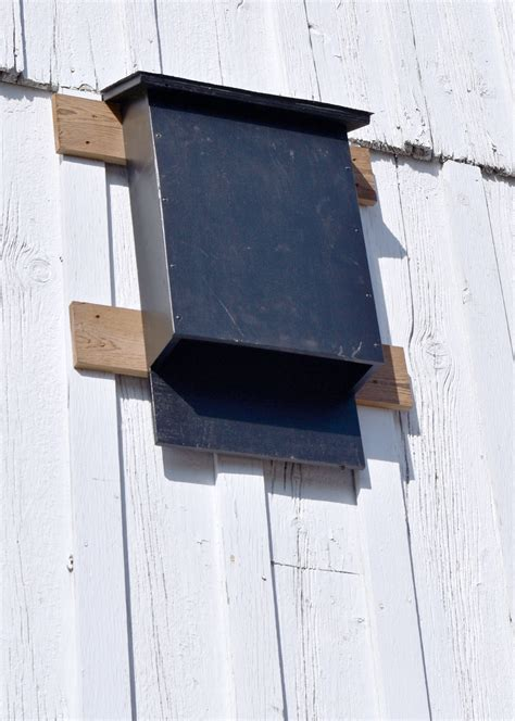 bat houses how to build a bat house woodworkers guild of america