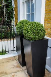 planters with sculpted box woods yard and patio