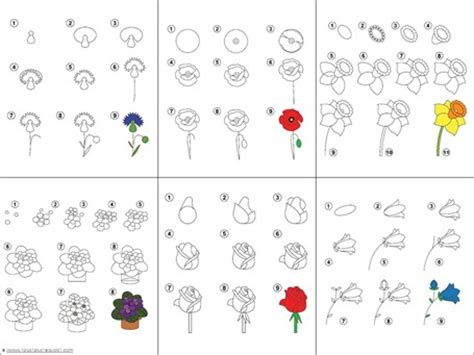 printable instructions for drawing flowers let s draw flowers free printables 1 1 1 1