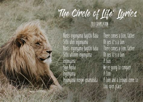 Lion Biography In English | 20 beautiful african words in the lion king that ll make