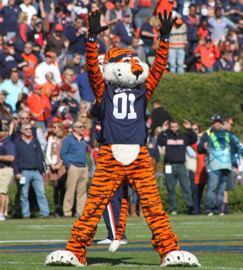 Finder Auburn Auburn Tigers Mascot Www Pixshark Images Galleries