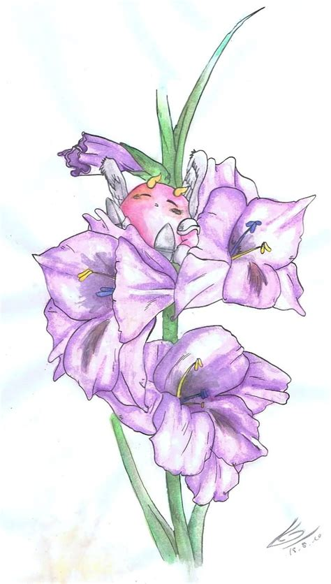 gladiolus tattoo designs 20 gladiolus flower tattoos sketches golfian