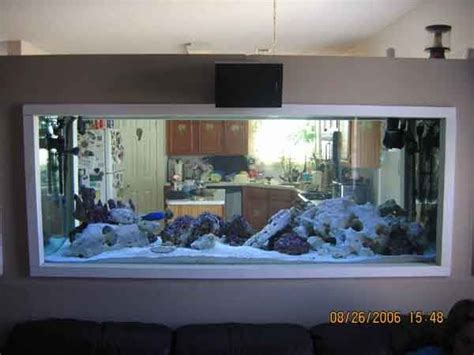fish tank in living room pin by joseph evans on home fish tanks pinterest